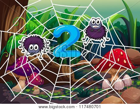 Number two with two spiders on web