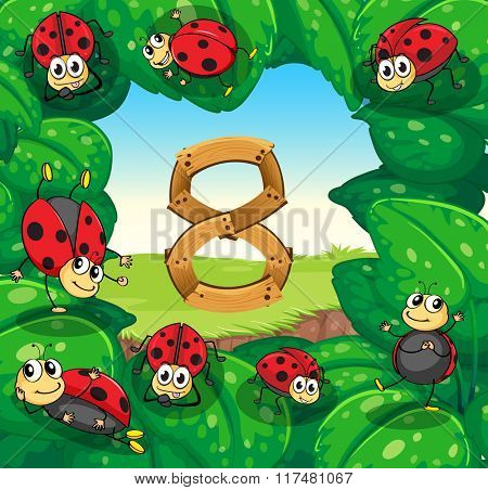 Ladybugs on leaves with number 8 illustration