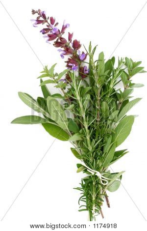 Fresh Herbs - Rosemary, Sage, Oregano