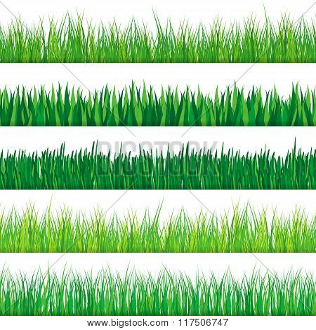 Green grass set. Isolated on white background