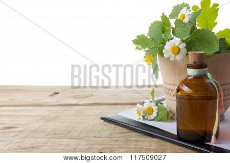 Fresh herb and medical clipboard on wooden table. Alternative medicine concept.