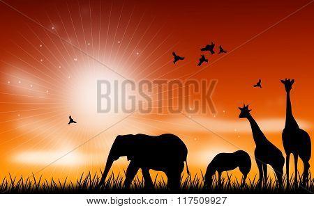 African Animal Scene Illustration