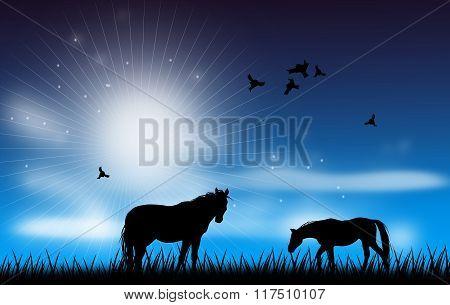 Horse Scene Illustration