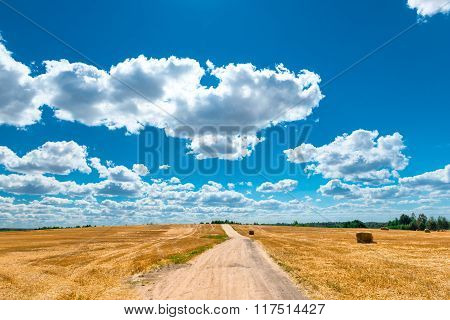 Magnificent Scenery Beautiful Yellow Field And Cumulus Clouds