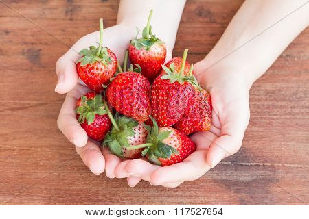 Fresh Red Stawberry