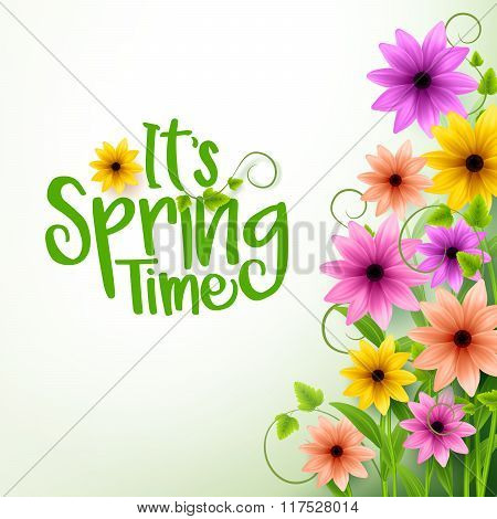 Vector Spring Time Text in White Background with Realistic 3D Colorful Flowers