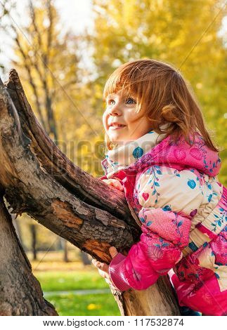 Happy Child Playing In The Park Climbing On The Tree