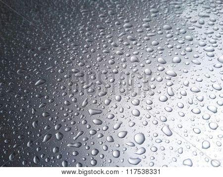 Rain Dew