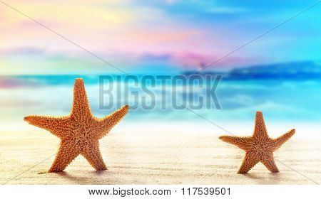 Two starfish on white sand beach with ocean