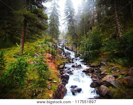 Foggy Mountain stream