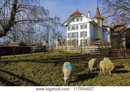 Wittigkofen Palace In Bern In Switzerland
