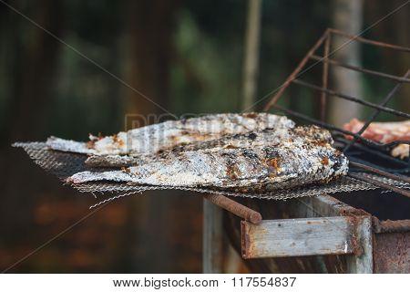 Grilling Fish On Framfire
