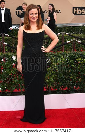 LOS ANGELES - JAN 30:  Amy Poehler at the 22nd Screen Actors Guild Awards at the Shrine Auditorium on January 30, 2016 in Los Angeles, CA