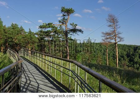 Steel Pathway With Handrails On The Forest Mountain