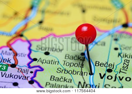Srbobran pinned on a map of Serbia