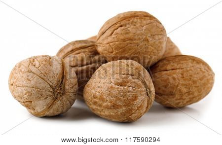 Pile of walnuts, isolated on white