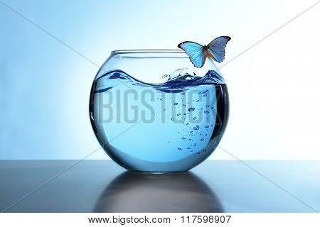Fish bowl with water and butterfly on it on light blue background