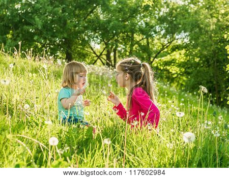 Two happy  little sisters on the field with dandelions