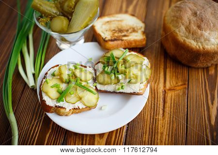 Vegetarian sandwich with cheese, pickles and herbs