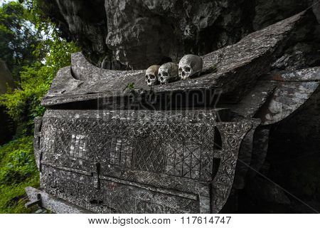 Wooden coffin with skulls in Tana Toraja's traditional cemetery in a forest. Sulawesi island, Indonesia