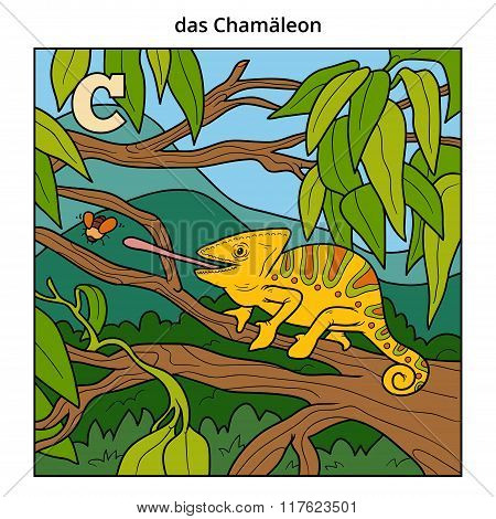 German Alphabet, Letter C (chameleon And Background)