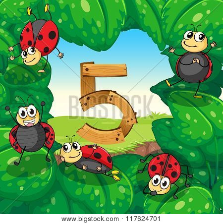 Number five with five ladybugs on leaves illustration