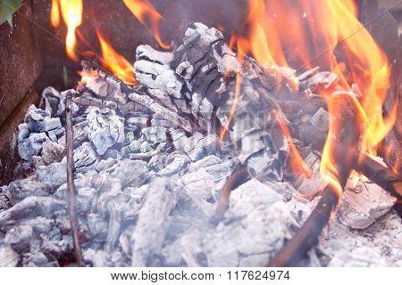 Burning Firewood In Metal Tank