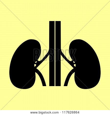 Human kidneys sign