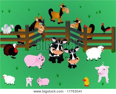 Country farm animals out in pasture