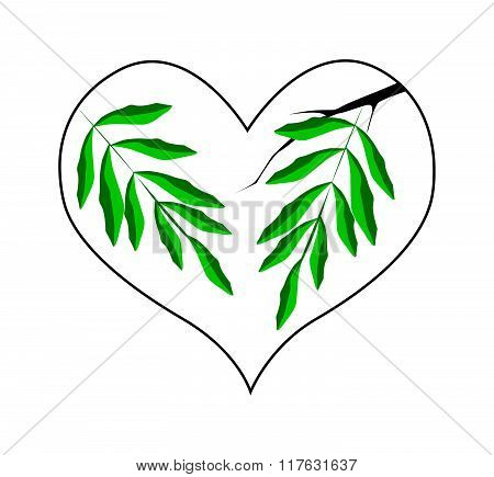 Branch Of Green Leaves In A Heart Shape