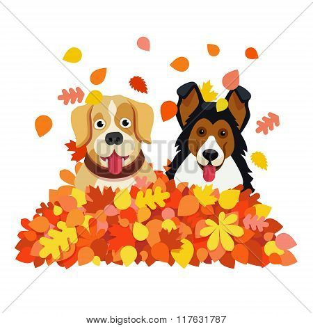 Two dogs playing in an autumn fallen leafs pile