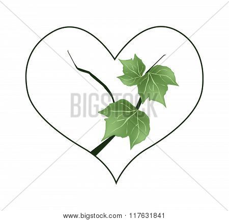 Branch Of Green Leaves In Heart Shape