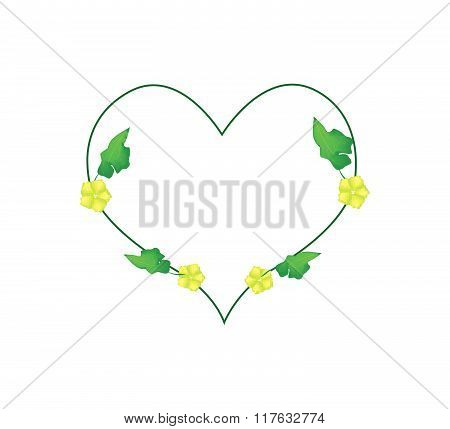 Ivy Plant With Blossoms In Heart Shape