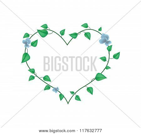 Vine Leaves With Blossoms In A Beautiful Heart Shape