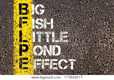 Business Acronym Bflpe Big Fish Little Pond Effect