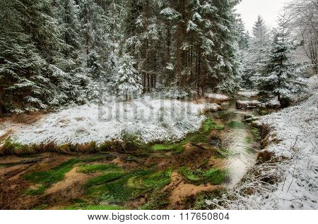 A River Flowing Winter Wonderland