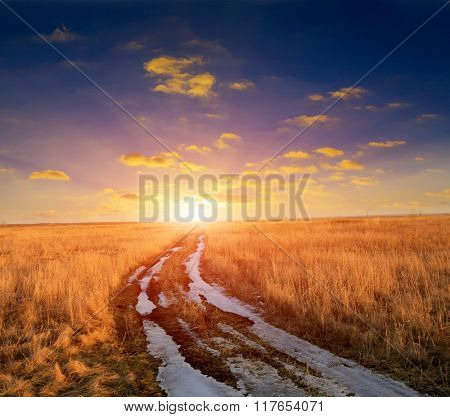 rut road in steppe to sunset