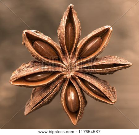 Star Anise On A Brown Background