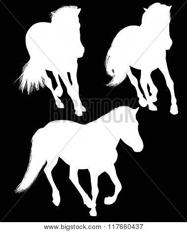 illustration with three horses isolated on black background