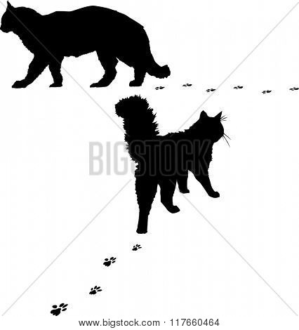 illustration with two cat silhouettes isolated on white background
