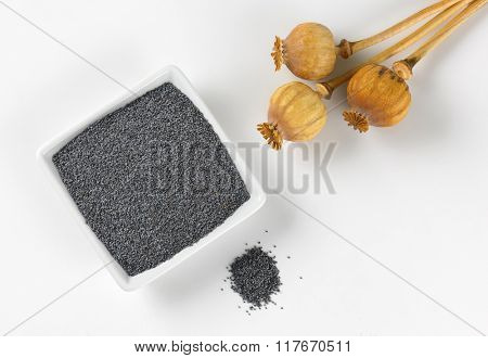bowl of poppy seeds and poppy heads on white background