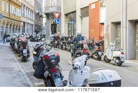 Motorcycles Parked Cars.