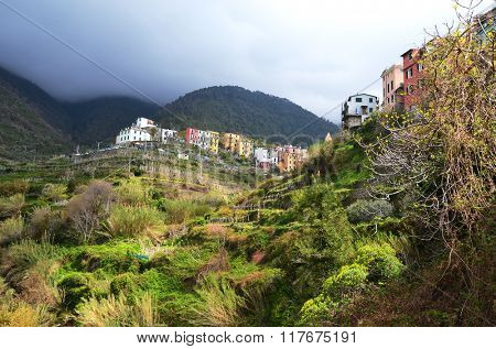 Corniglia village. Cinque Terre, Italy.