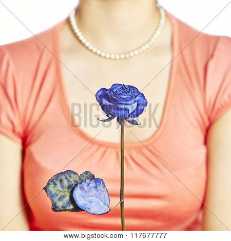 Blue Rose And Decollete Woman