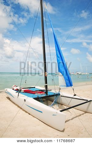 Hobie Catamaran Sailboat