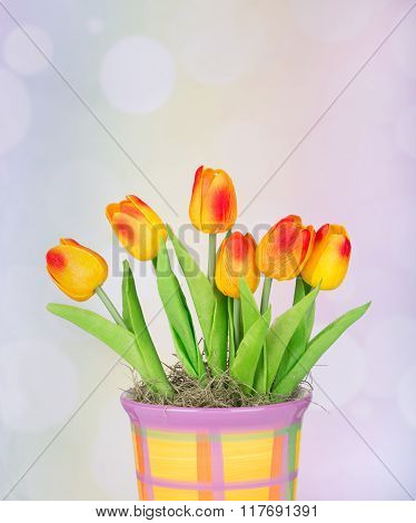 Colorful Tulips In A Pot