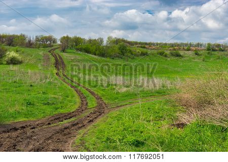 Forked country road at spring season