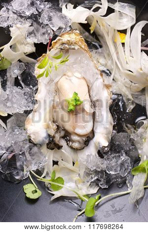 Oyster on the half shell with fennel salad and seaweed.