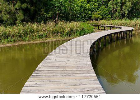 Wood bridge in the lake