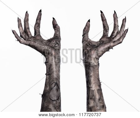 Black Hand Of Death, The Walking Dead, Zombie Theme, Halloween Theme, Zombie Hands, White Background